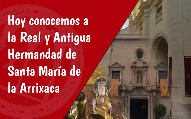 Hermandad de la Arrixaca Día de la Iglesia Diocesana Murcia
